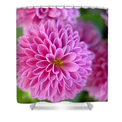 Floating Shower Curtain by Kathy Bucari