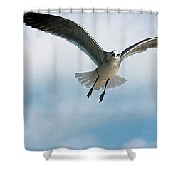 Floating On Air Shower Curtain by Christopher Holmes