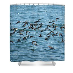 Shower Curtain featuring the photograph Flock Of Birds by Trace Kittrell