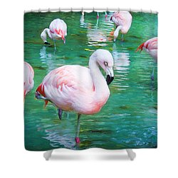 Flock Of Flamingos Shower Curtain