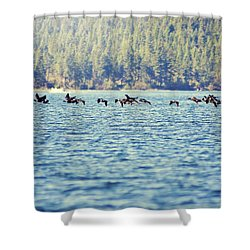 Flock Of Geese Shower Curtain
