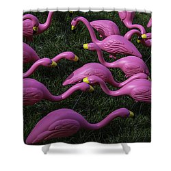 Flock Of  Plastic Flamingos Shower Curtain by Garry Gay