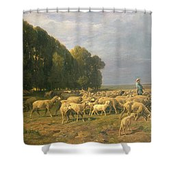 Flock Of Sheep In A Landscape Shower Curtain by Charles Emile Jacque