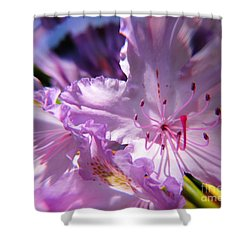 Shower Curtain featuring the pyrography Flofloflower by Yury Bashkin