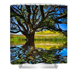 Flooded Oak Shower Curtain