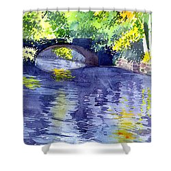 Shower Curtain featuring the painting Floods by Anil Nene