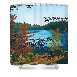 Shower Curtain featuring the painting Floodwood by Lynne Reichhart