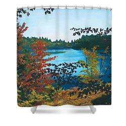 Floodwood Shower Curtain by Lynne Reichhart
