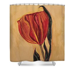 Flor Del Alma Shower Curtain