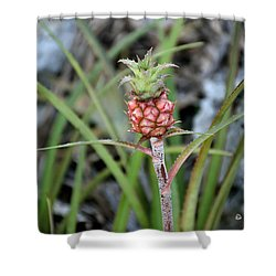 Flor Pina Shower Curtain