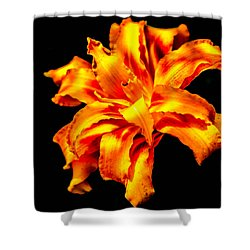 Flora Dance Shower Curtain by Bruce Pritchett