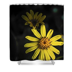 Flora In Yellow Shower Curtain