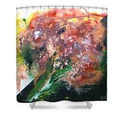 Floral Abstract Shower Curtain by Jan Wendt