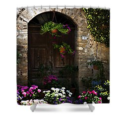 Floral Adorned Doorway Shower Curtain by Marilyn Hunt