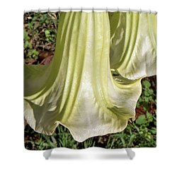 Shower Curtain featuring the photograph Floral Ballgown by Betty Northcutt