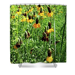 Floral Shower Curtain by Cynthia Powell