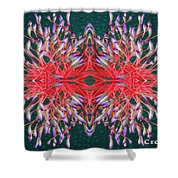 Floral Display Shower Curtain by Gary Crockett