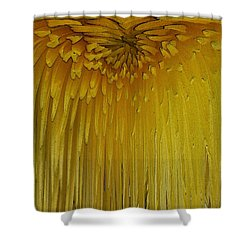 Floral Falls 5 Shower Curtain