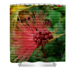 Floral Fan Shower Curtain