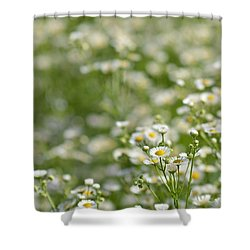 Floral Field #1 Shower Curtain
