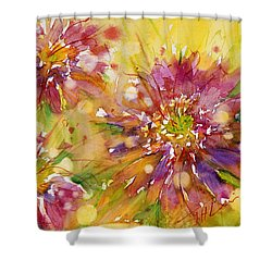 Floral Fireworks Shower Curtain by Judith Levins