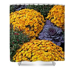 Floral Masterpiece Shower Curtain by Ann Horn