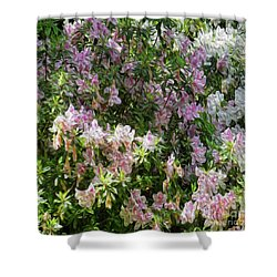 Floral Me This Shower Curtain