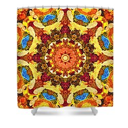 Mandala Of The Sun Shower Curtain