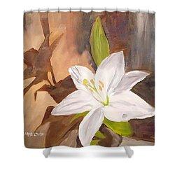 Floral-still Life Shower Curtain