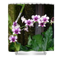 Floral Sway Shower Curtain by Deborah  Crew-Johnson