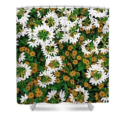 Floral Texture In The Summer Shower Curtain