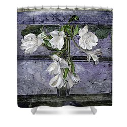 Shower Curtain featuring the photograph Floral Window Frame by Bonnie Willis