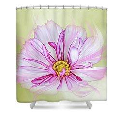 Floral Wonder Shower Curtain