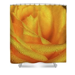 Shower Curtain featuring the photograph Floral Yellow Rose Blossom by Shelley Neff