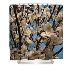 Floral08 Shower Curtain