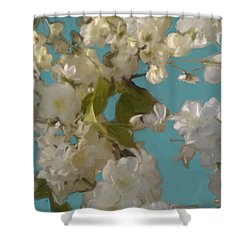 Floral09 Shower Curtain