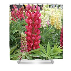 Floral2 Shower Curtain by Cynthia Powell