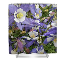 Floral3 Shower Curtain by Cynthia Powell