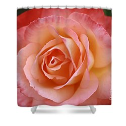 Shower Curtain featuring the photograph Florange by Stephen Mitchell
