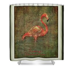Shower Curtain featuring the photograph Florida Art by Hanny Heim