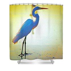 Florida Atlantic Beach Ocean Birds  Shower Curtain