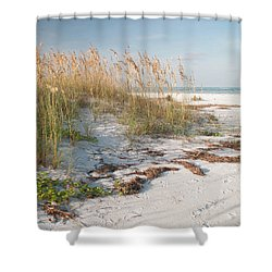 Florida Beach And Sea Oats Shower Curtain