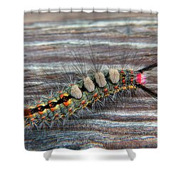 Florida Caterpillar Shower Curtain