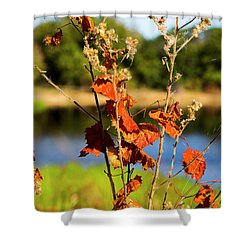 Florida Fall Leaves Shower Curtain