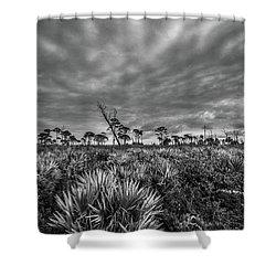 Florida Flatwoods Shower Curtain