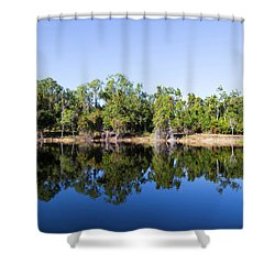Florida Lake And Trees Shower Curtain