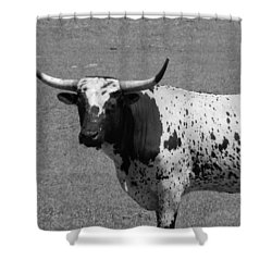Florida Longhorn Black And White Photo Shower Curtain by Warren Thompson