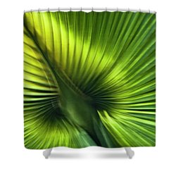 Florida Palm Frond Shower Curtain by Carolyn Marshall