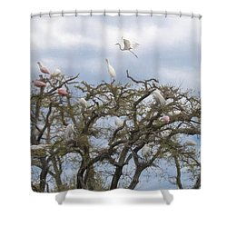 Shower Curtain featuring the photograph Florida Rookery by Kelly Marquardt