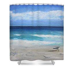 Florida Seagull Shower Curtain